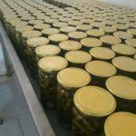 خیارشور غیر تخمیری ارزان فروش