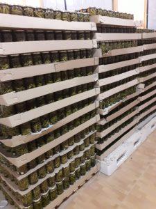 صادرات خیارشور به ارمنستان
